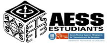 Cursos d'estiu AESS